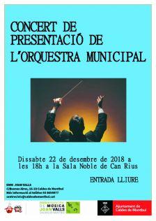 Cartell presentació orquestra municipal