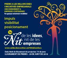 Cartell Nit de les idees
