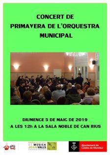Imatge del Concert de l'Orquestra Mpal.