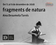 """Banner de l'exposició """"Fragments de natura"""""""